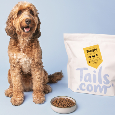 A dog with hypoallergenic Tails.com food