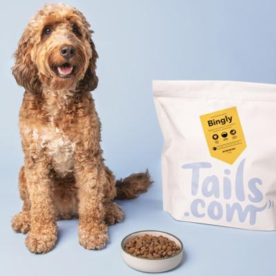 Un chien avec des croquettes hypoallergénique Tails.com