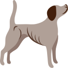 Underweight dogs