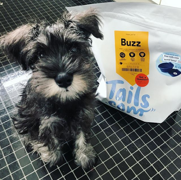 Buzz and tails.com dog food
