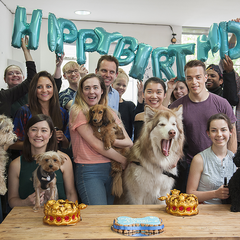 Zeus and Noodles birthday party