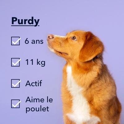 alimentation pour chiens stérilisés